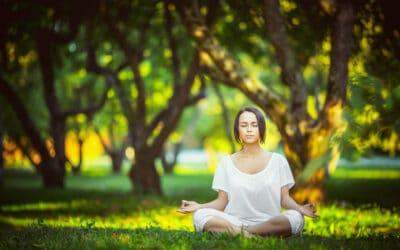 Yoga Vinyasa Paris 10